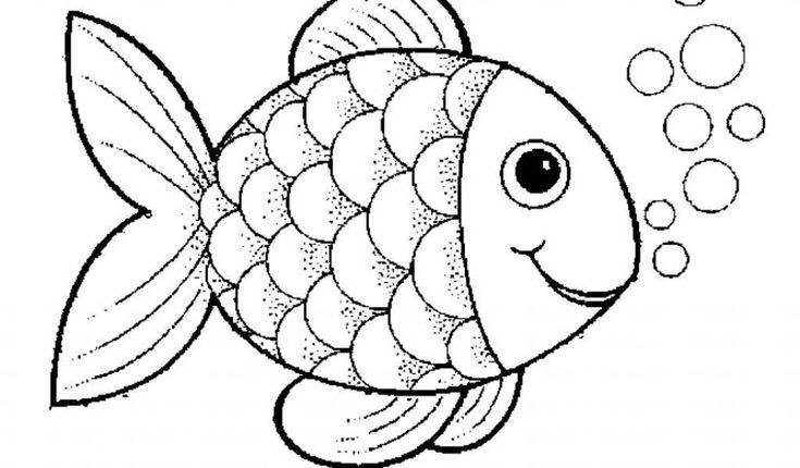 fisch malvorlage 10 best malvorlage fische of fisch