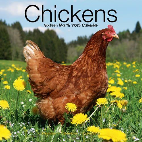 Chickens 2013 Calendar 30425-13