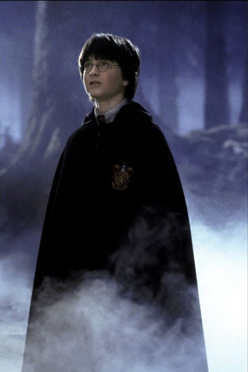 Harry in the Forbidden Forest  forest scene? battle scenes; spectacle; fog machine/ dream sequence