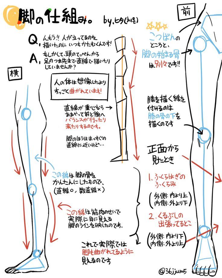 脚の仕組み : 【pixiv】人物の描きかた講座!!!顔、手、足、筋肉の描きかたを学ぼう!! - NAVER まとめ