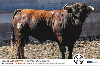 torodigital: Festejos taurinos en Xodos