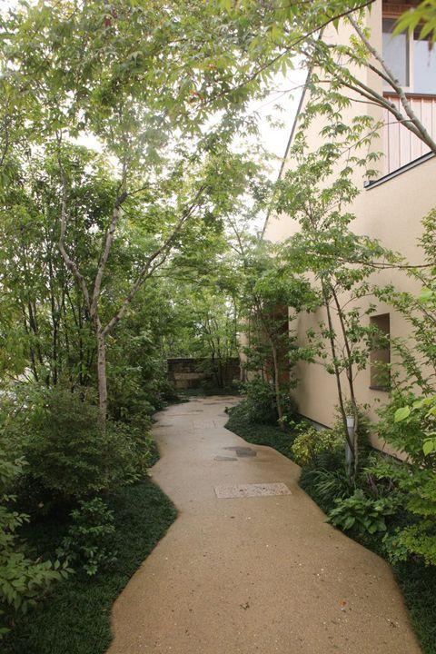 姫路のソーラーハウス|横内敏人建築設計事務所