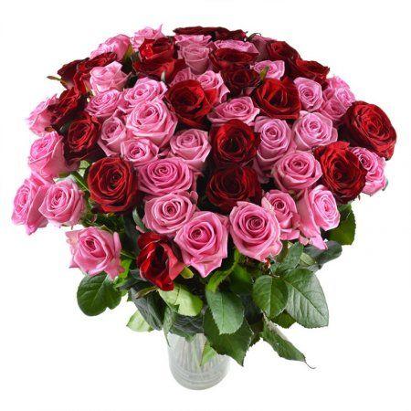 Большой букет роз. Большой букет из полных бокальчатых роз двух бархатных насыщенных оттенков – розового и красного – идеален для романтичных и изысканных женщин, эмоциональных натур, которые ценят роскошь отношений и всю полноту жизни.