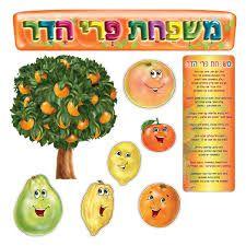 Image result for פירות הדר