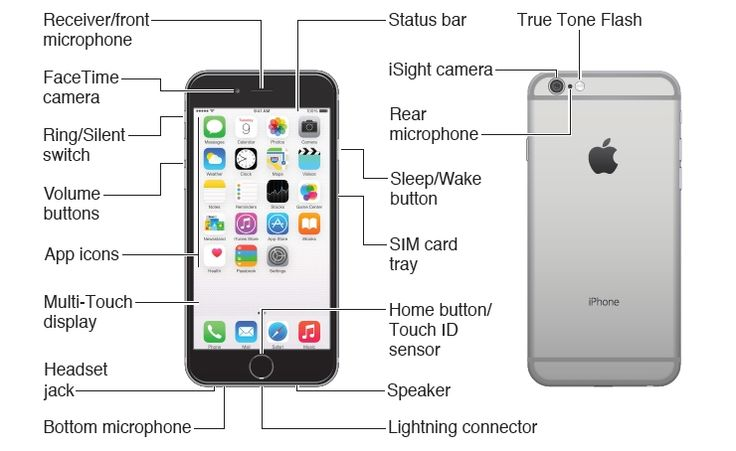iphone 4s manual iphone 6 diagram search iphone 6 10920