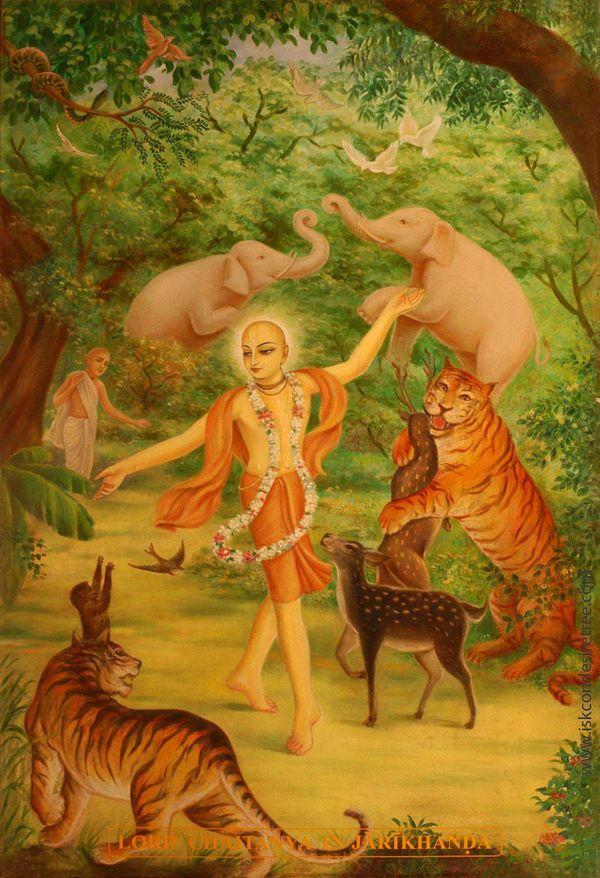 Chaitanya  lila Jarikhanda Forest