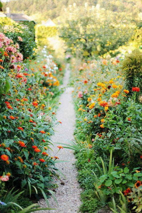 Garden, unrestrained