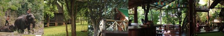 Cambodja, Sen Monorom, Nature lodge hotel oost