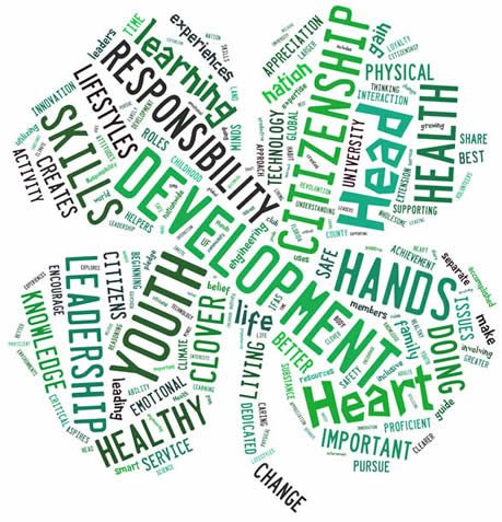 Clover Word Cloud  4 H Graphics Pinterest Your Life