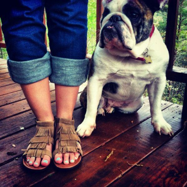 We love this bulldog snapshot, paired with the Minnetonka Maui sandal!