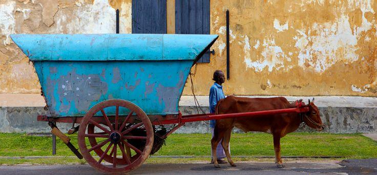 Sri Lanka Luxury Hotel Galle, Historic Hotel in Galle Fort - Amangalla - home