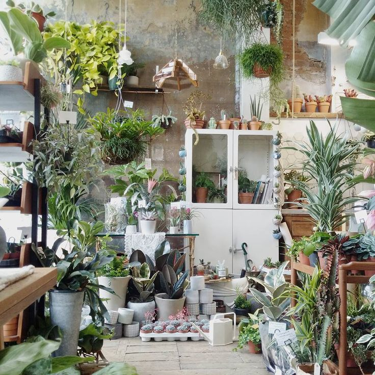 Shopper's Diary: Conservatory Archives in East London: Gardenista