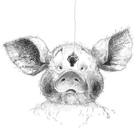 свиньи | 129 фотографий