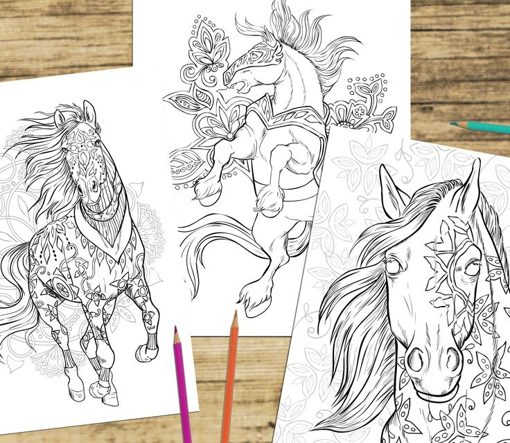 Coloring Book Etsy : 180 best horse lovers coloring books images on pinterest