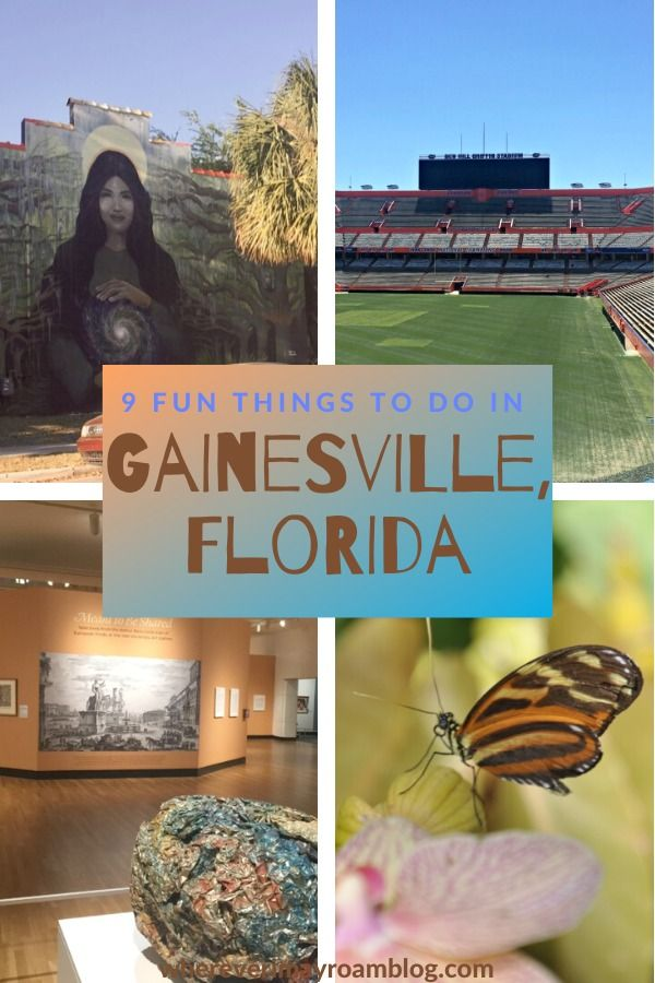 9 Fun Things To Do In Gainesville Florida Wherever I May Roam Travel Blog Gainesville Florida Fun Things To Do Florida