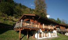 Chalet im Wald - in Wald im Pinzgau