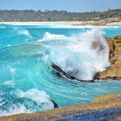 Cosy Corner Beach, Tasmania, Australia - click through for more inspiration on Tasmania!