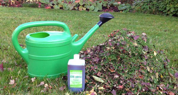 Effektive Mikroorganismen in Ihrem Garten im Herbst
