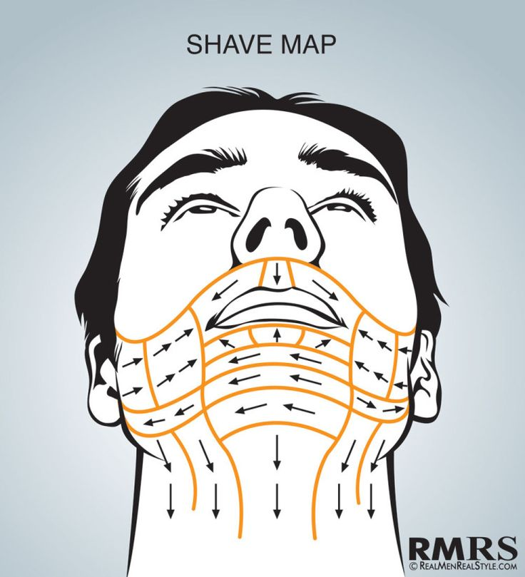 Shave Maps Infographic   How To Shave Correctly   Which Direction Do You Shave Your Face?