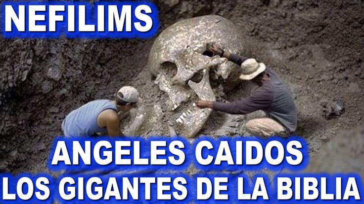LOS NEFILIM ANGELES CAIDOS LA DESENDENCIA DE GIGANTES CON LAS HIJAS DE L...