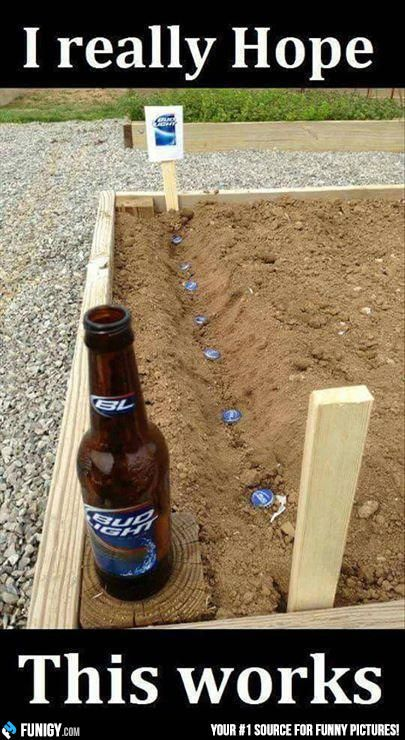 I really hope this works! (Funny Weird Pictures) - #beer #garden #plant
