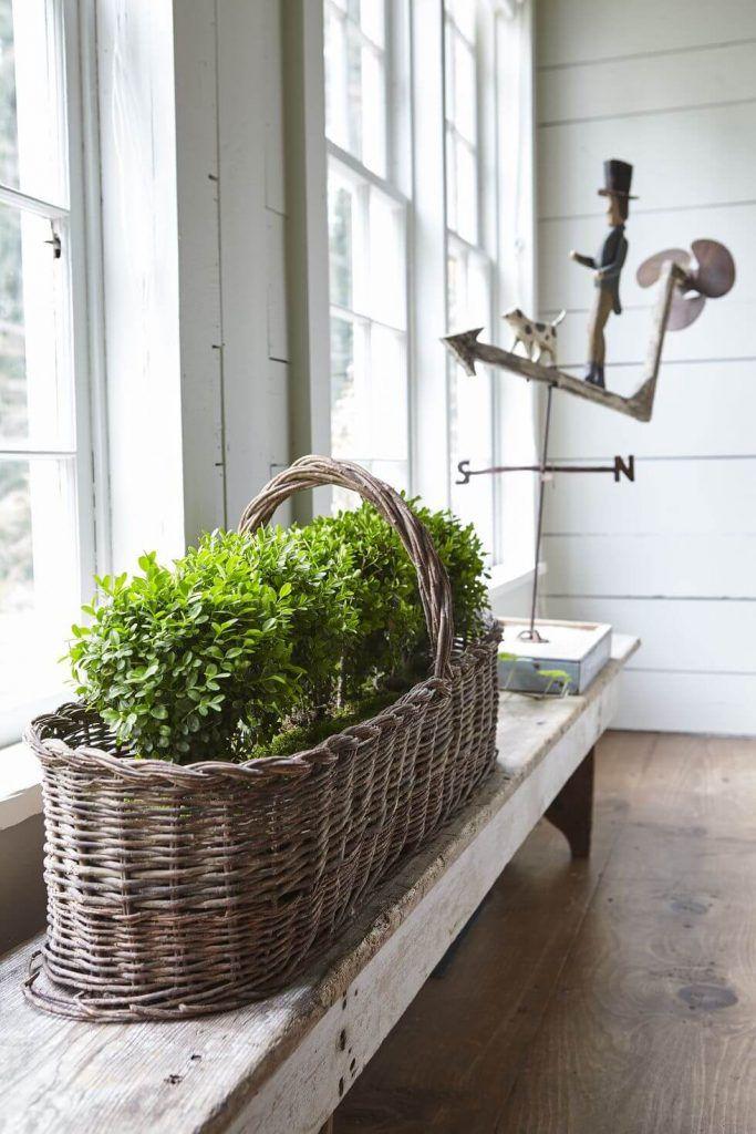 Übergroßer Korb der Grüns auf einer Bank   – DIY