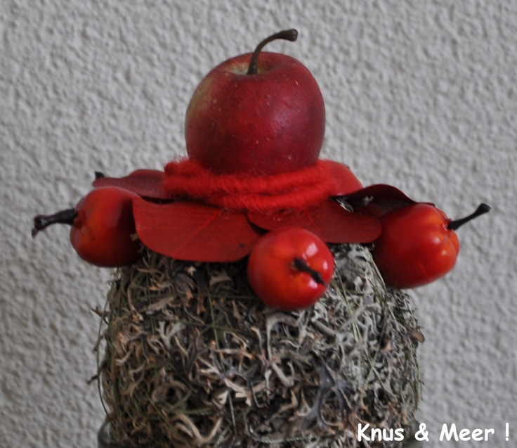 Moss ball with red leaves and apples / Mosbal met rode bladeren en appels