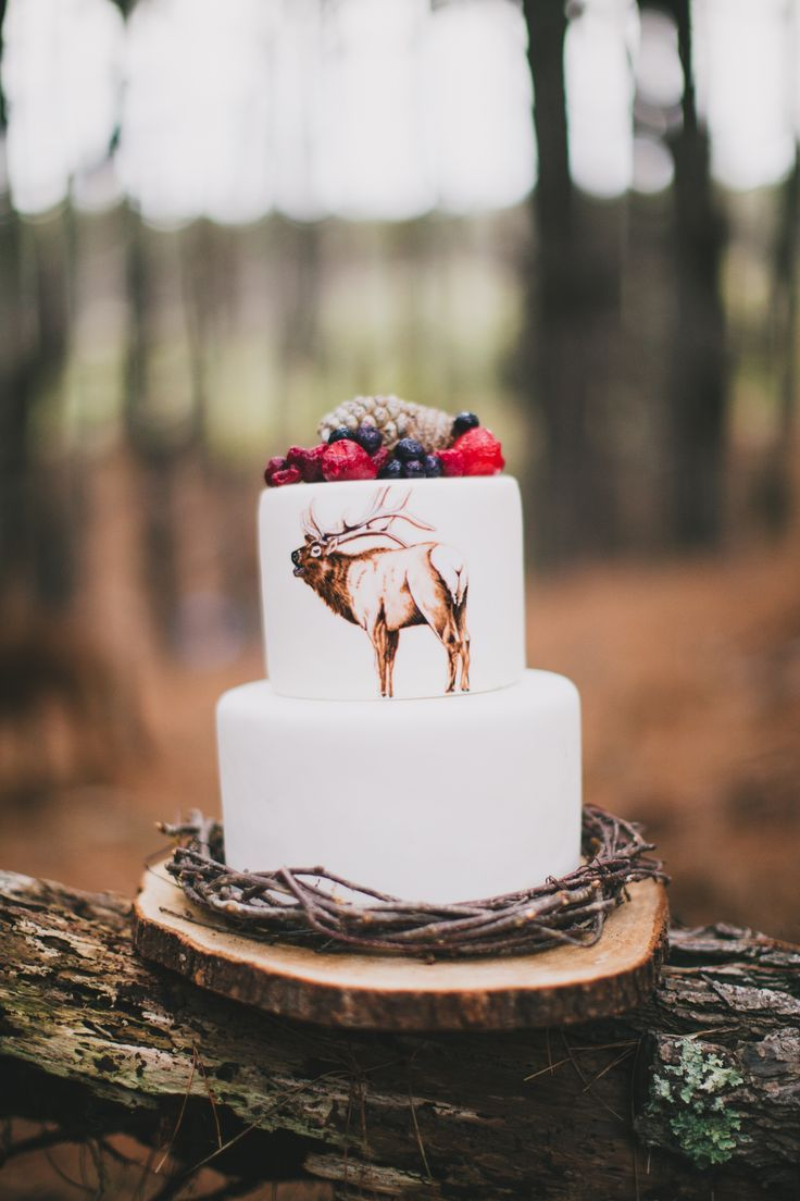 Sweet Deer Hand-Painted Cakes Hand-Painted Cakes http://www.sweetdeer.co.nz Amy Kate Photography  New Zealand
