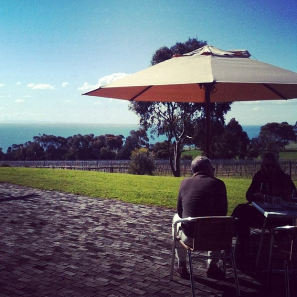What a day!! #rueclermarket #terindahestate #andypye #cafe #lunch #outdoors #sun #sunshine #summer #sea #ocean #views #grass #winery #geelong #bellarine - @rueclermarket- #webstagram