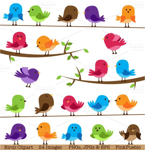 Check out Cute Birds Clipart and Vectors by PinkPueblo on Creative Market