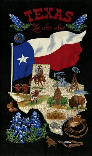 134 Best Texas Quilts Amp Crafts Images On Pinterest Texas