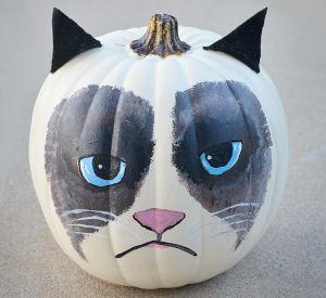 Grumpy Cat Painted Pumpkin - It's one of the best painted pumpkin ideas we've seen this season.