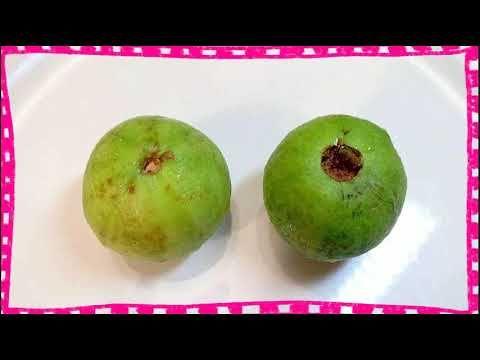 Donde Puedo Conseguir Hojas De Guayaba https://www.youtube.com/watch?v=OHIw6o5A9Gw propiedades de la hoja de guayaba para la salud - beneficios medicinales de la hoja de guayaba. hojas de guayaba para controlar la diabetes. por lo consiguiente es ideal para personas que padecen de diabetes ya que al tomar té de hojas de guayaba ayuda a regular los niveles de glucosa en la sangre reduce los niveles de colesterol malo... los compuestos de las hojas pueden colaborar a reducir la presión…