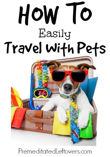 Tips for how to easily travel with pets that are sure to help take the stress away from going on vacation and taking your pets along with you this year.