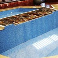 1000+ Ideas About Concrete Pool On Pinterest | Pool Decks Pools And Stamped Concrete