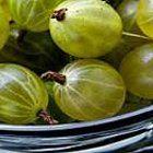 5 gooseberry recipes ( chutney 4 tourtière)