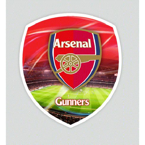 Arsenal F.C. Universal Skin Large