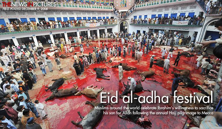 This is how Muslims celebrate EID, the festival of sacrifice, and one of the holidays for which Muslims are demanding U.S. public schools be...
