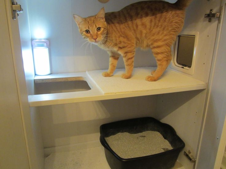 DIY Hidden Litter Box! We got rid of the litter trails and ugly open litter box and transformed it into this nice looking bathroom cabinet. Cat used and approved! | Meow and Later