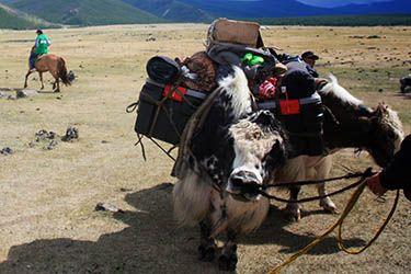Retrouvez la paix et la sérénité en Mongolie ! Rando de 2 semaines dans la Vallée de l'Orkhon, avec yaks de bât, galops dans la steppe et visite de temples bouddhistes... A partir de 1990 € VOLS INCLUS. http://www.rando-cheval-mongolie.com/voyages/randonnees-cheval/mongolie-orkhon-bivouac-cheval.html