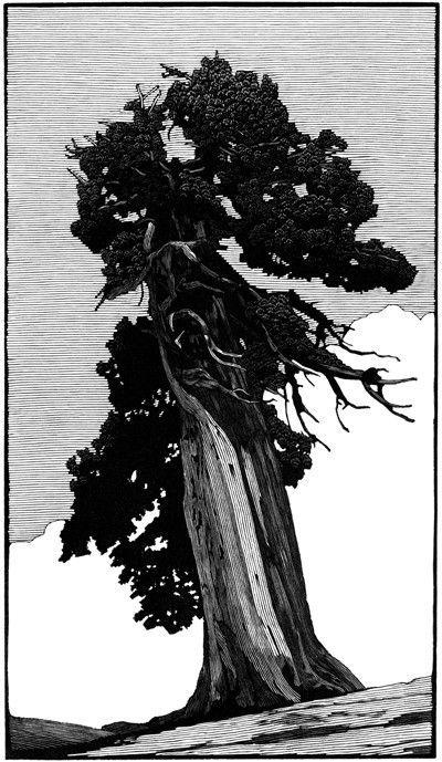 Richard Wagener. Outlook Tree. 2011. (wood engraving)