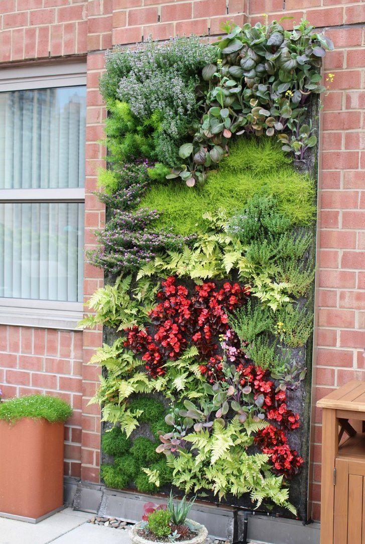 Modern garden wall art   best Pasillo images on Pinterest  Vertical gardens Gutter