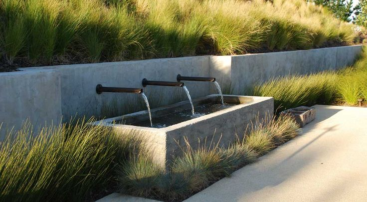 THE FARM AT CAPE KIDNAPPER'S : HAWKE'S BAY, NEW ZEALAND. Native coastal plants are contextually appropriate and encourage native wildlife. / By Nelson Byrd Woltz - Collaboration with Natural Habitats, Auckland NZ – architects of record.