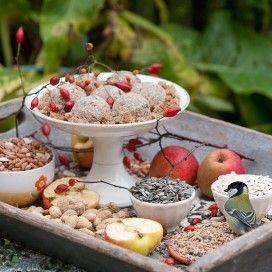 dienblad met vogeltaart en los voer o.a. appels, pinda,s en bessen