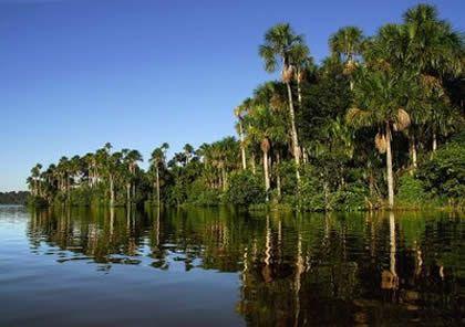 This beautiful lake is located near Puerto Maldonado city capital of Madre de Dios department