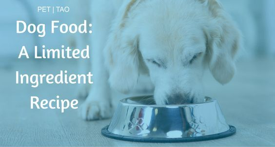 The Limited Ingredient Dog Food Recipe: Eastern Food Therapy Backed by Veterinarians