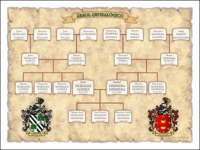 Rbol geneal gico personalizado mixto dise o en forma - Diseno arbol genealogico ...