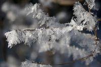 Pangeados: Imágenes de la ola de frío y nieve en Europa - Febrero 2012