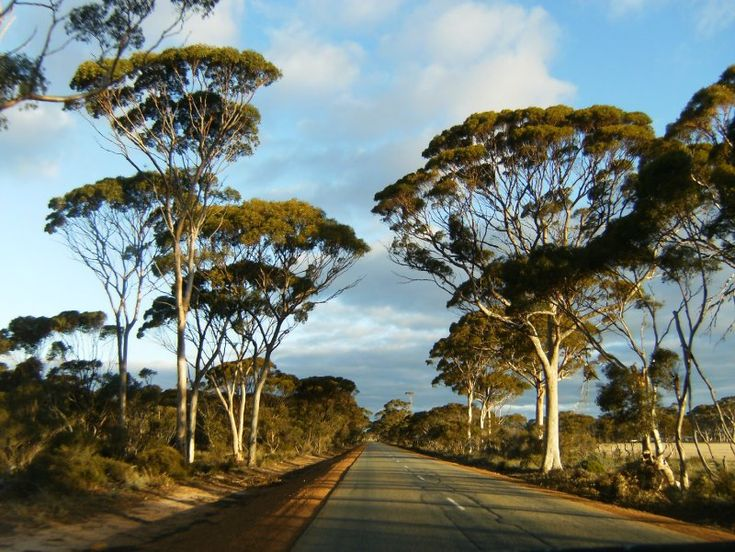 Outback Road    Journey - Hyden to Esperance