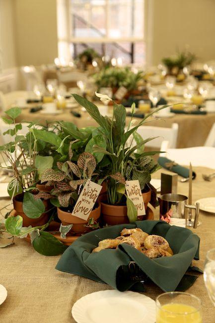 Green Mitzvah Plant Centerpieces Florie Huppert Design